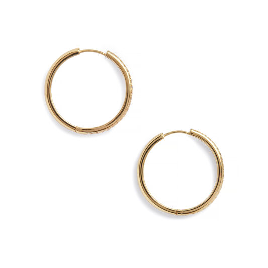 Cubic Zironia & Gold Hoop Earrings